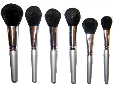 must have makeup brushes in your kit