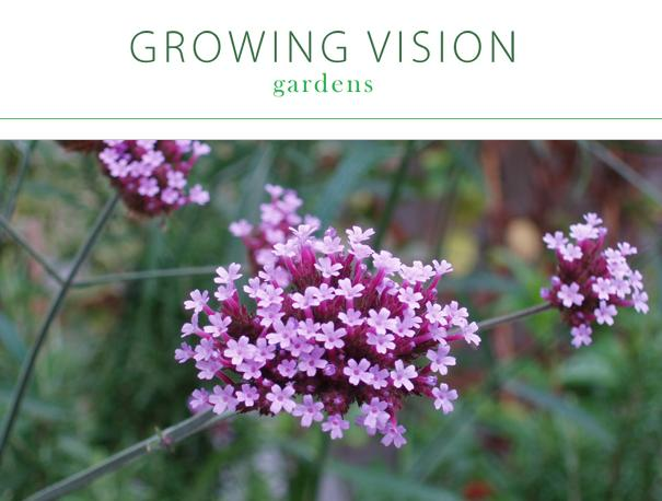 Growing Vision Gardens LTD