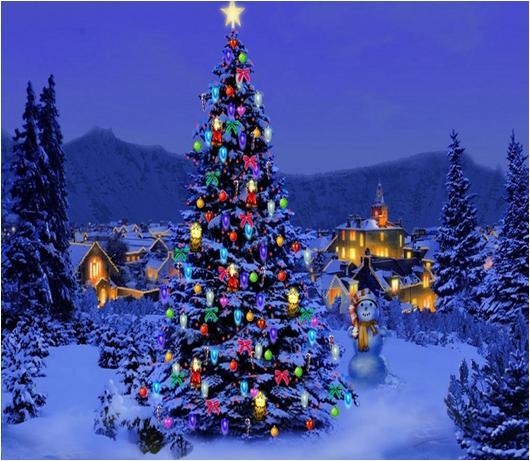 History of Christmas Tree & Lights