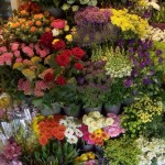 List of Flower Shops in London for Valentines Day Bouquets
