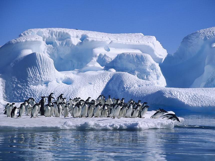 Antarctica tourist visit visa paris