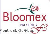 Bloomex Flowers Montreal