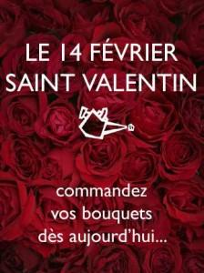 Fleuriste Montreal Pourquoi pas fleurs – Florist