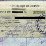Guniea Visa