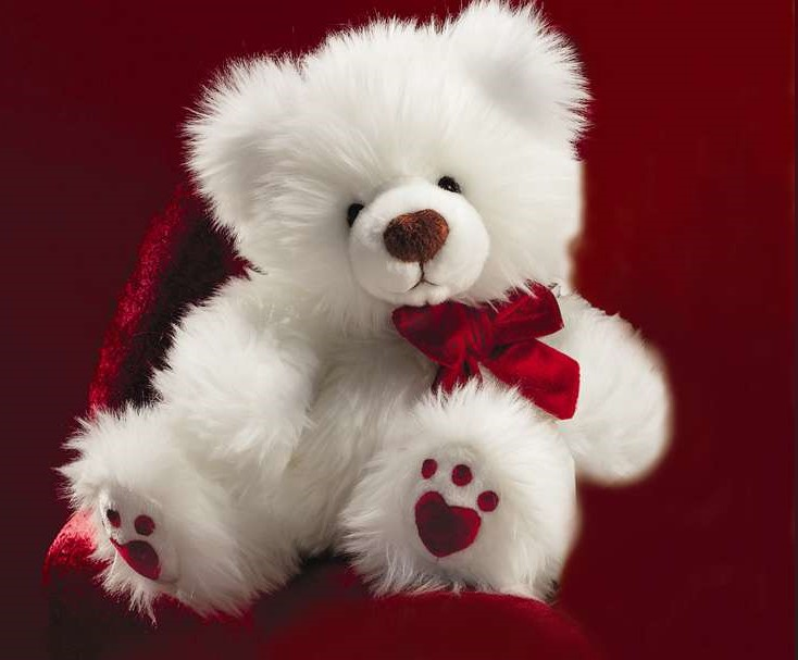 Valentine's Day Teddy Bear Gift