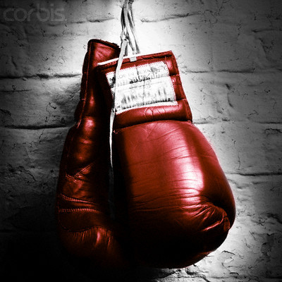 Ottawa Boxing Clubs Overview