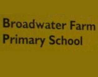 Broadwater farm primary school