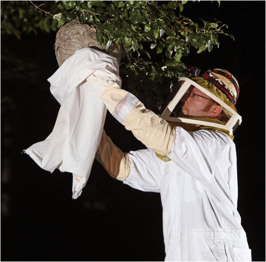 how to get rid of hornets nest naturally