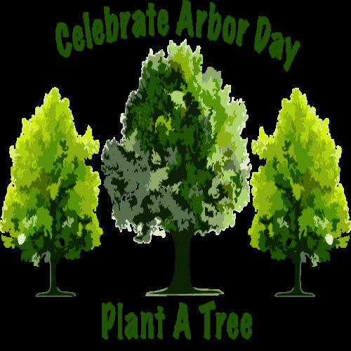 About Arbor Day