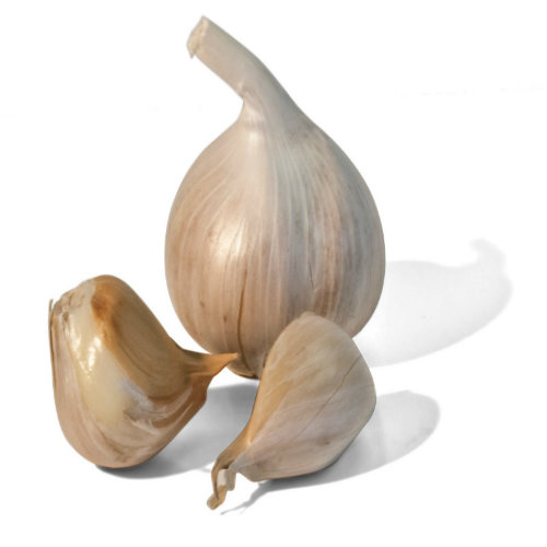 Celebrating Garlic Day