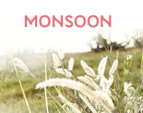 Monsoon Shops