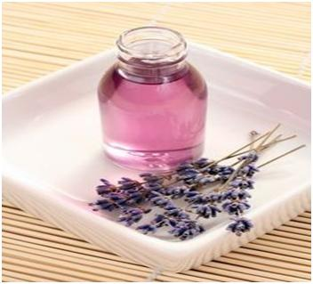 lavender leaves, oil ans satche for bed bugs