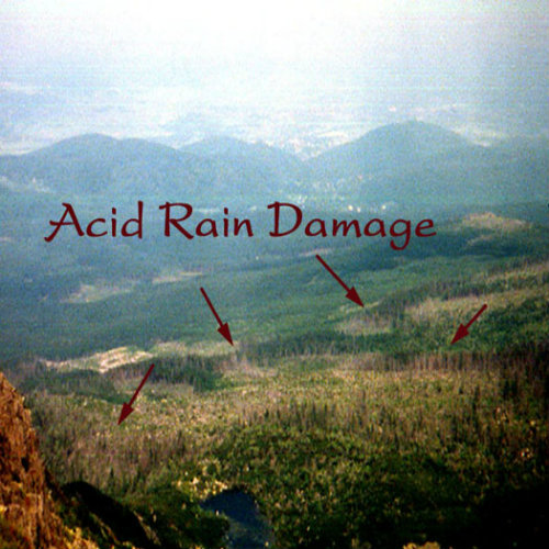 Damages of Acid Rain