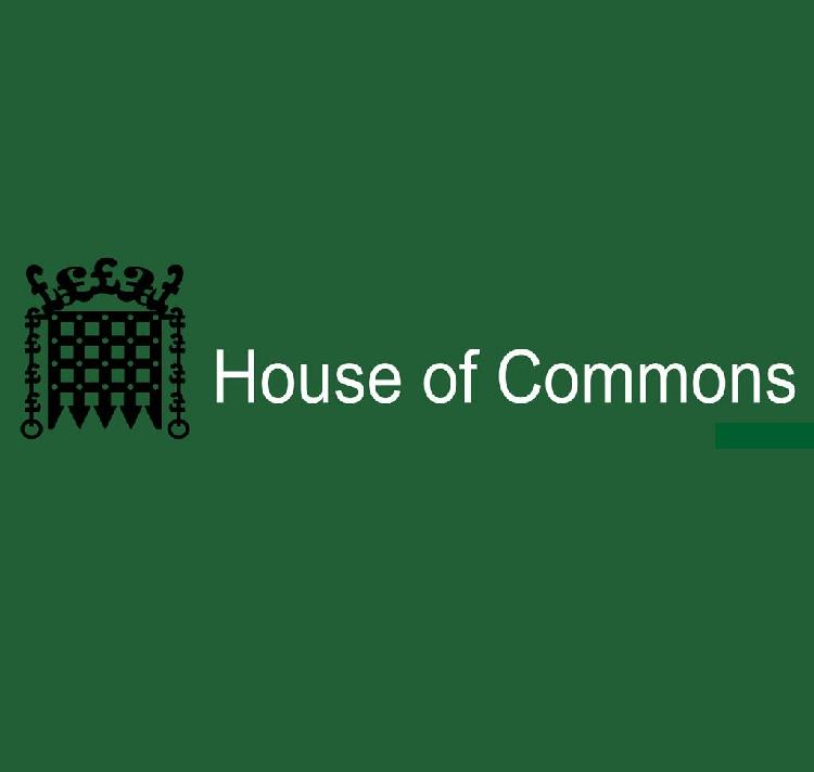 Guide about House of Commons London