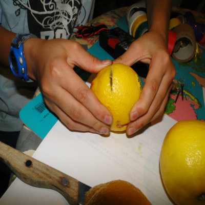 how to make a fruit battery science fair project
