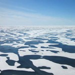 Huge Algae Bloom Discovered Under Arctic Ice by NASA