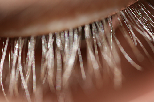 how to make ur lashes grow