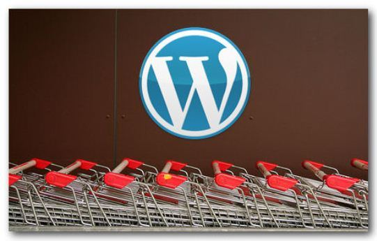Create E commerce Website with WordPress