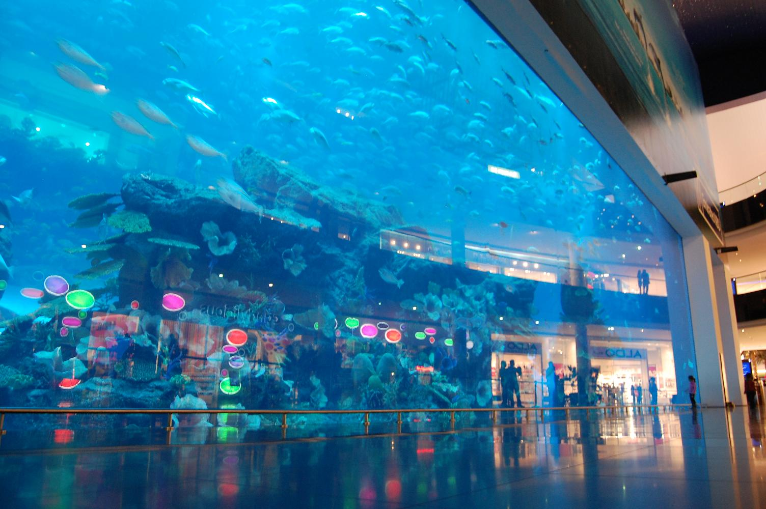 Top 10 things to do in dubai for Best at dubai