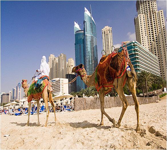 Explore Best Beaches to Visit in Dubai UAE