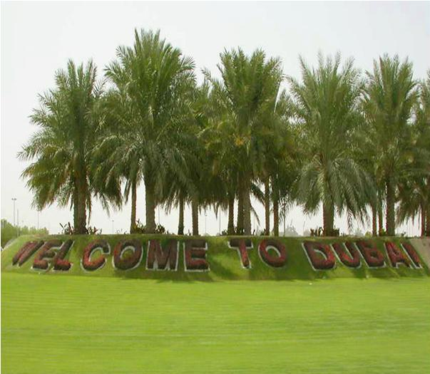 Public Parks in Dubai Overview