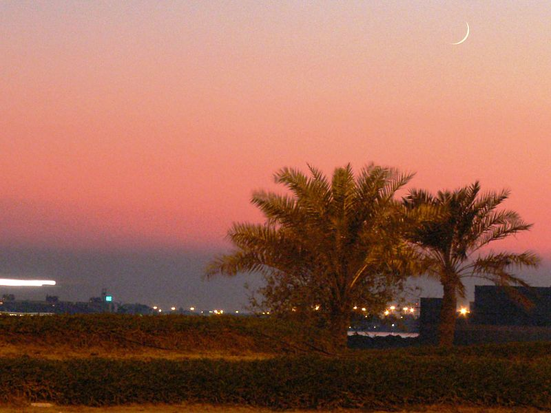 Ramadan Guide for Expatriates
