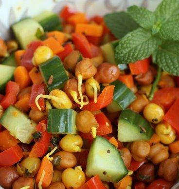 Sprouted Bean Salad Recipe