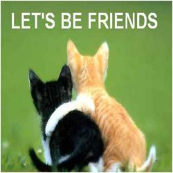 friendship is the foundation of any lasting relationship