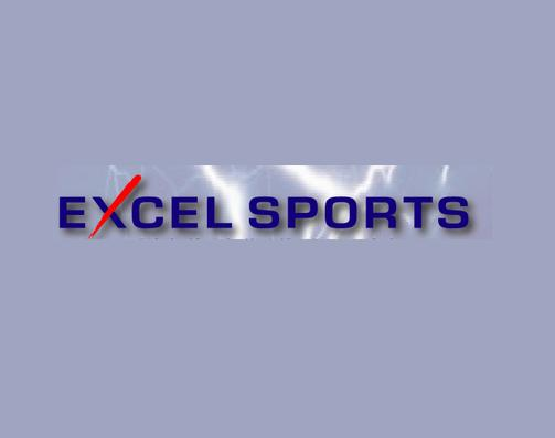 Excel Sports Services Dubai Overview