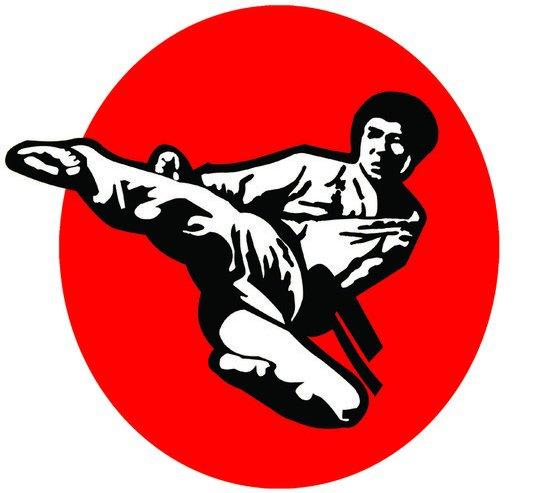 Golden Falcon Karate Centre Dubai Overview