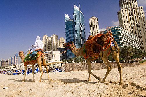 Hotels near Jumeirah Beach Dubai Overview