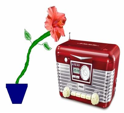 Music Player with Plant