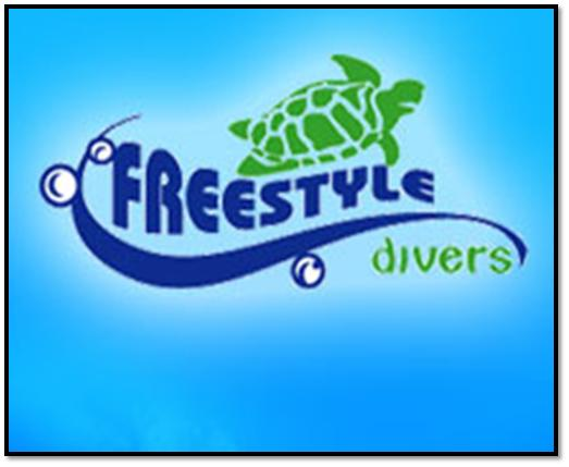 Freestyle Divers Dubai Overview