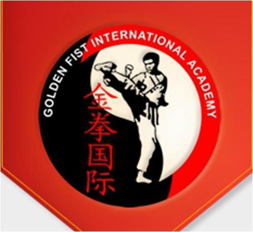 Golden Fist Karate Centre Dubai Overview