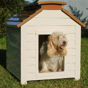 How To Build A Dog House In 4 Steps