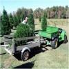 Load Christmas Tree