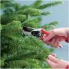 Prune Christmas Tree