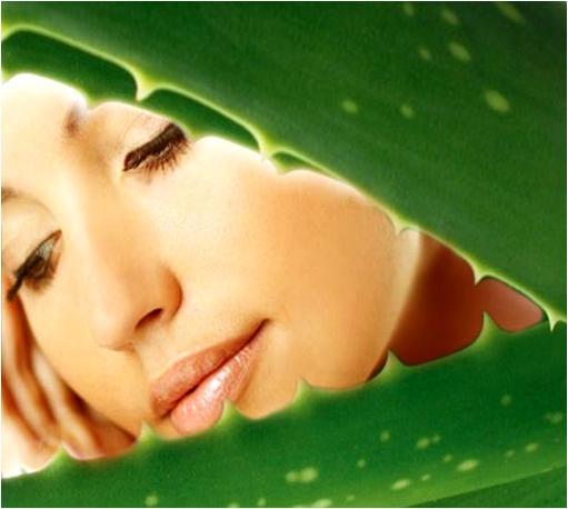Aloe Vera Facial Mask