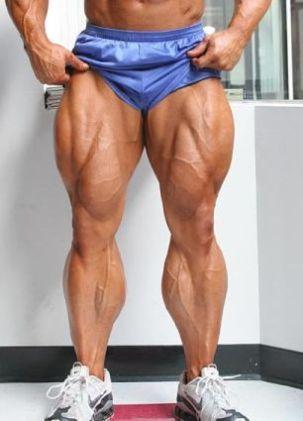 Main legs