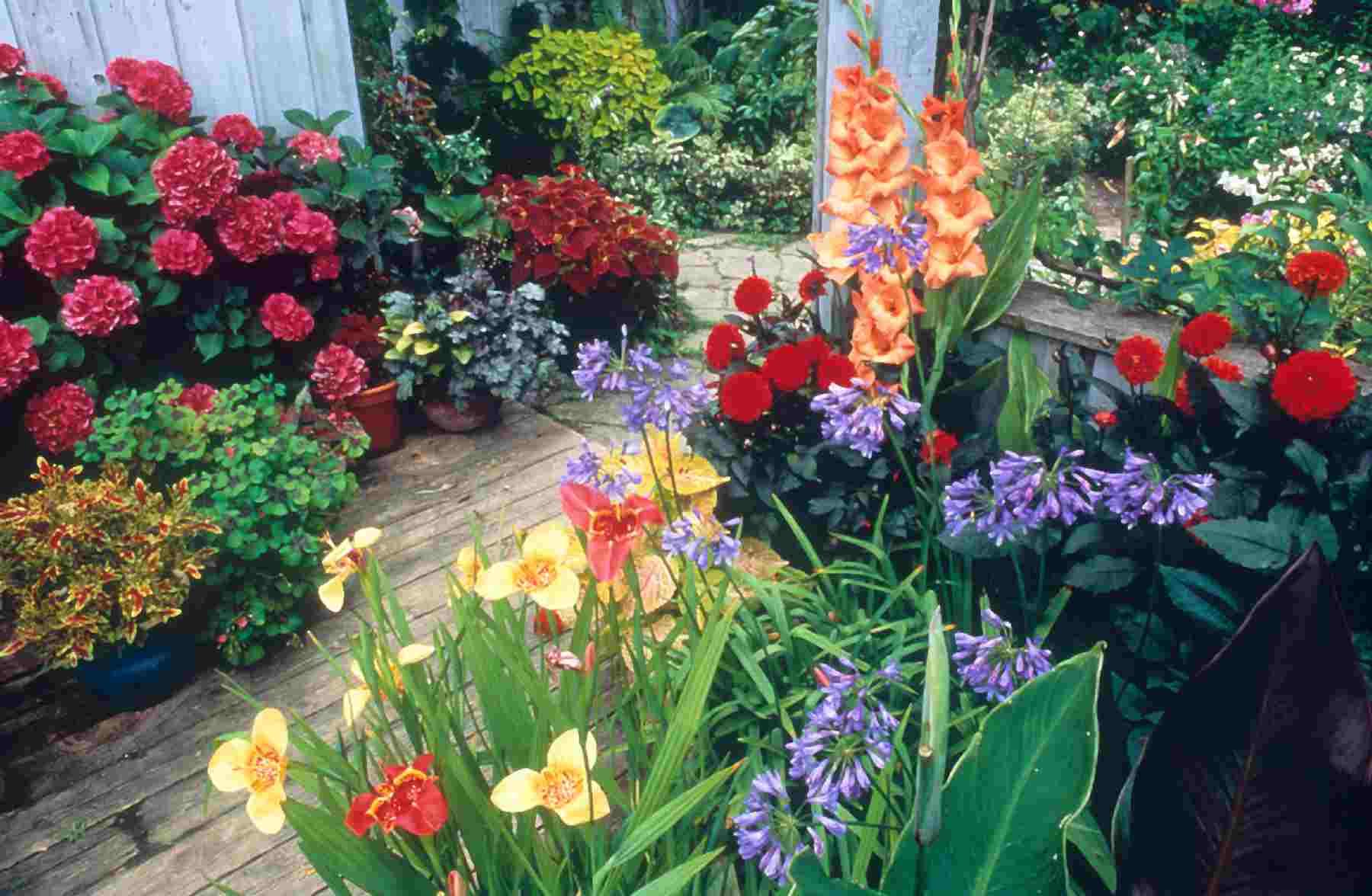 Enjoy Gardening