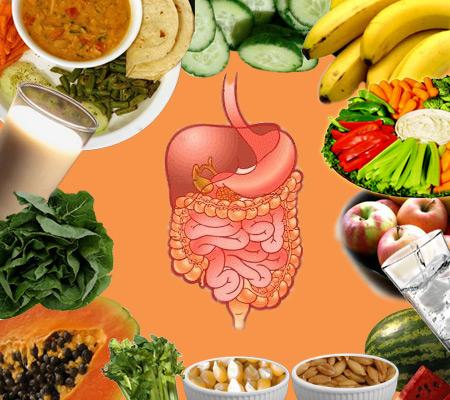 Food and Digestive System