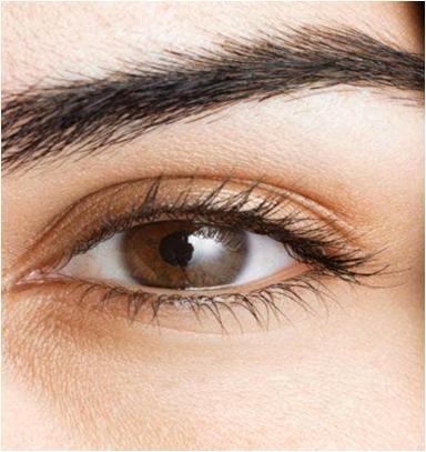 Pluck or Wax Eyebrows