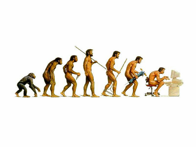 The evolution of mankind