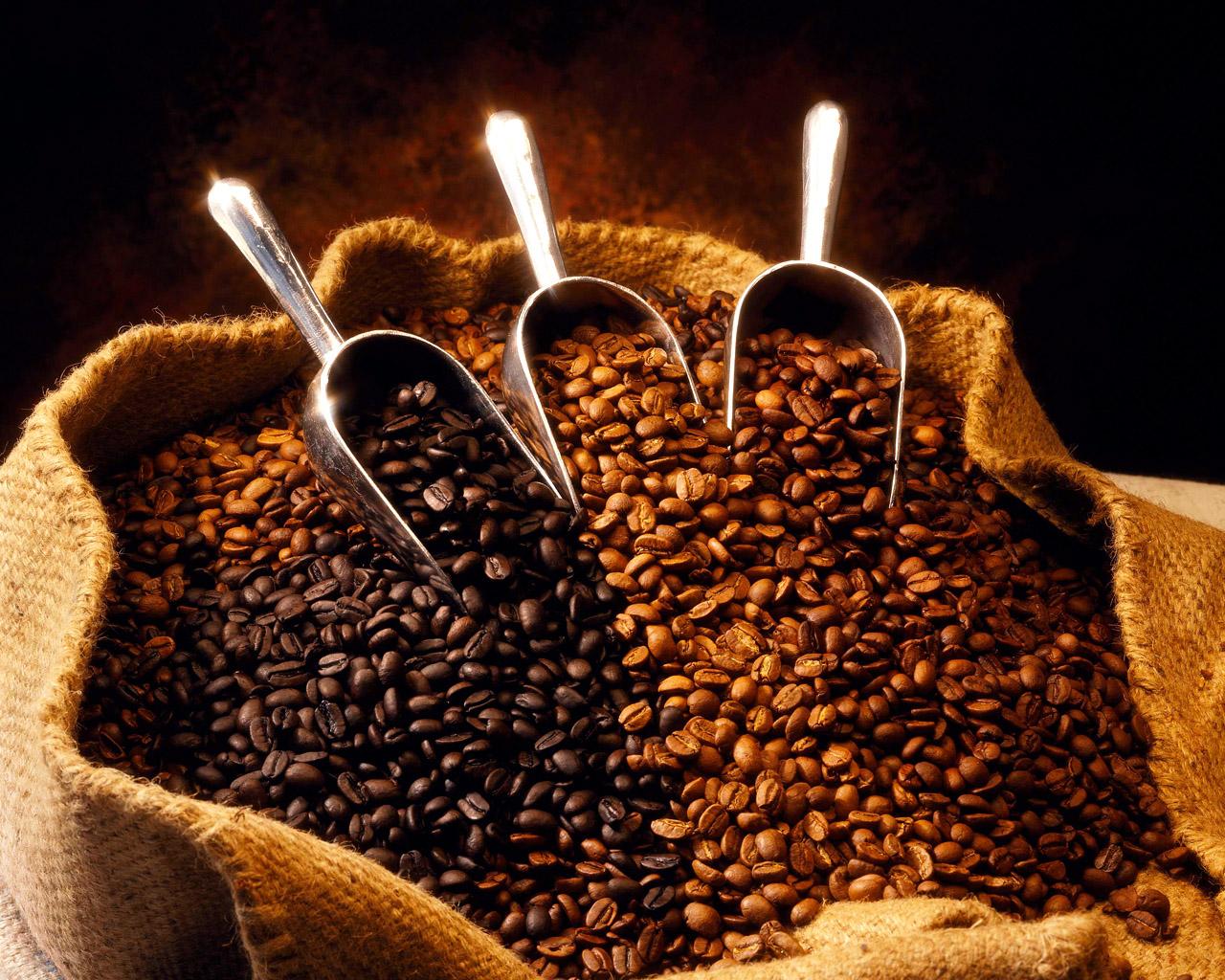 Winter Organic Coffee