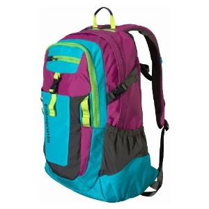 Patagonia Backpack