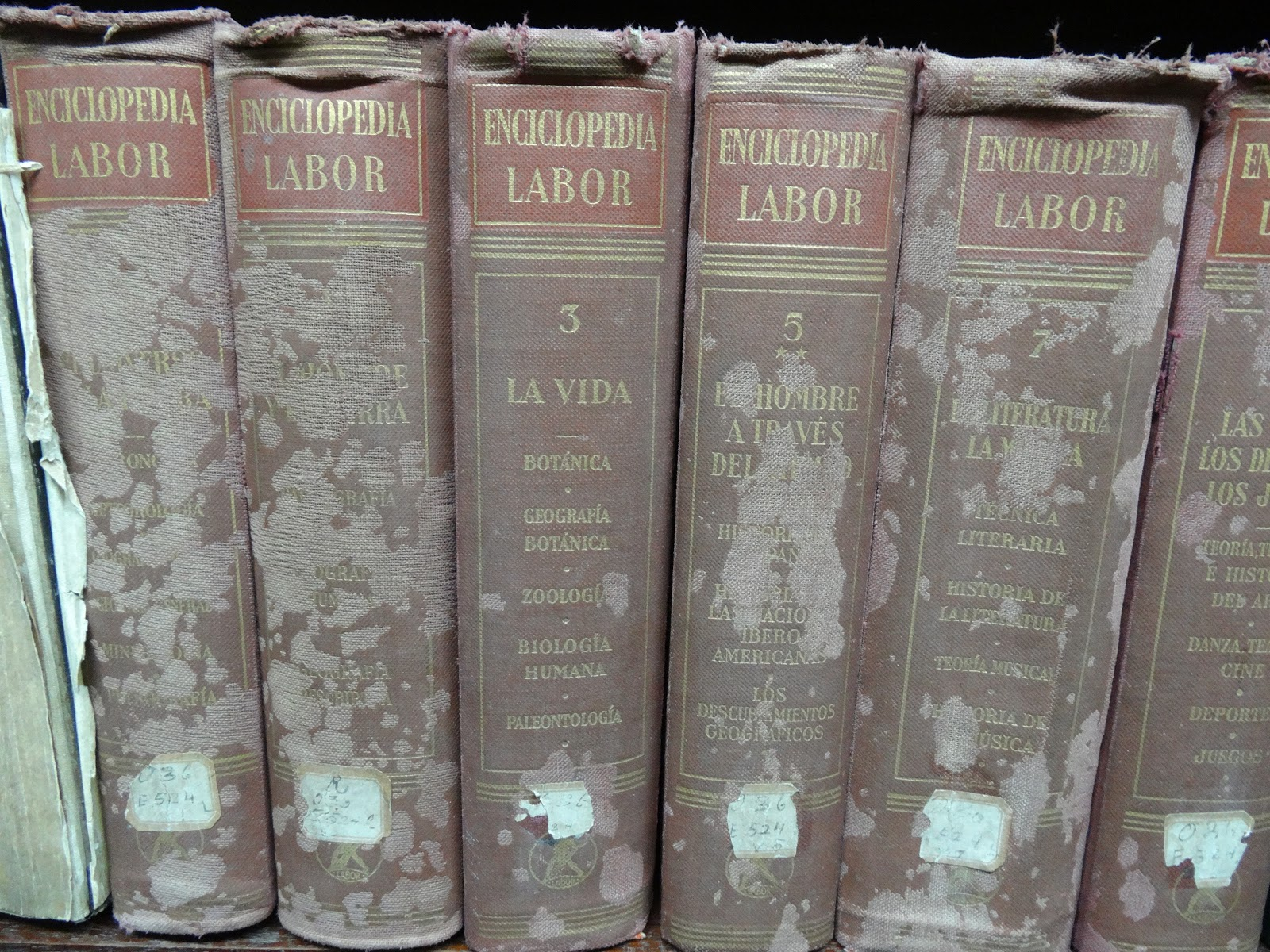 A collection of old books affected by mould and mildew