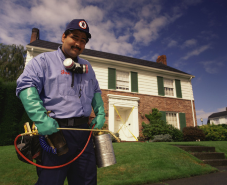 Find Ratings on Pest Control Services