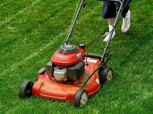 Lawn Mowin