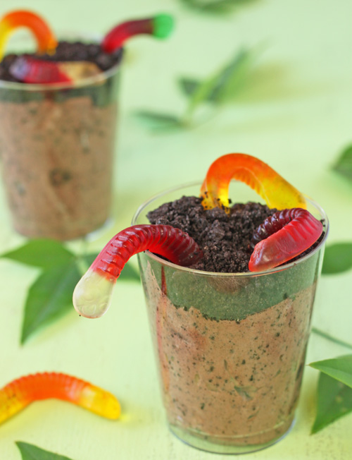 Worms in Dirt Pudding