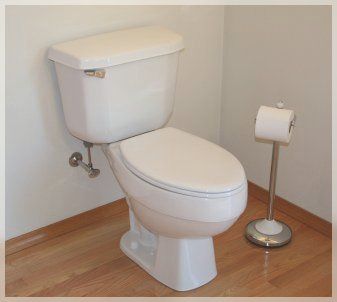 Remove Air from Toilet Plumbing